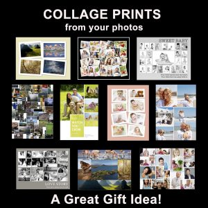 Commemorate and celebrate a favorite trip, family members, pets, or any special event in a custom designed photo collage.