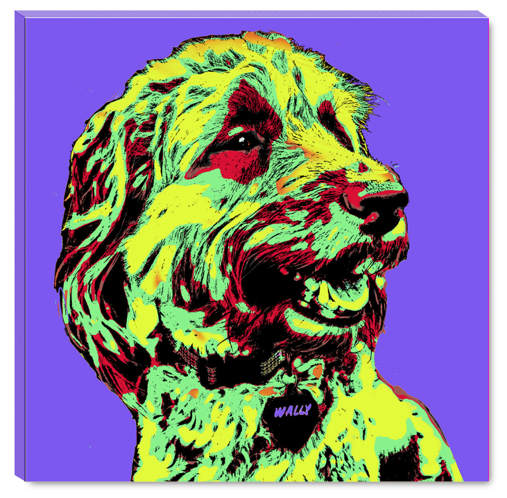"We can turn your pets, friends, family or products into ""POP-ART"" paintings!"